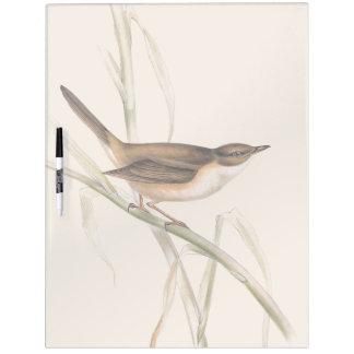 Warbler Bird Wildlife Animals Dry Erase Board