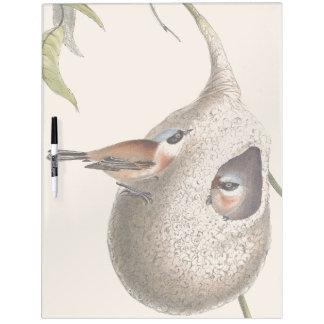Warbler Bird Wildlife Nest Dry Erase Board