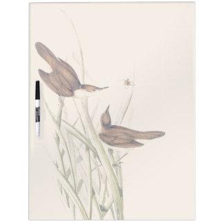 Warbler Birds Wildlife Animals Dry Erase Board