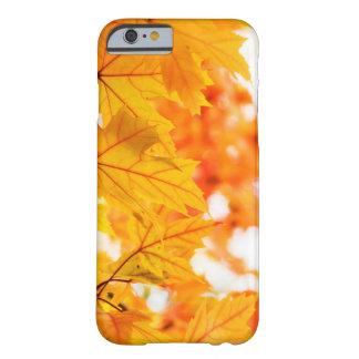 Warm and Vibrant Autumn Leaves Barely There iPhone 6 Case