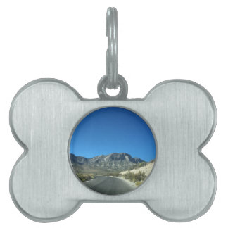 Warm desert days pet tag