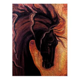 Warm Friesian Horse Postcard