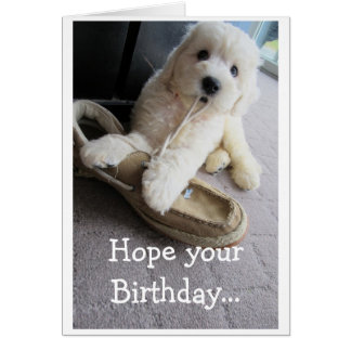 Warm Fuzzy Birthday, Cute Goldendoodle pup Humor Card