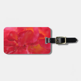 Warm Glow Luggage Tag