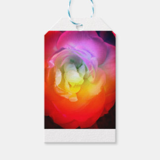Warm Mood Art Pack Of Gift Tags