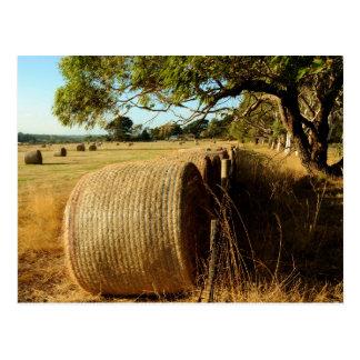 warm rural scene postcard