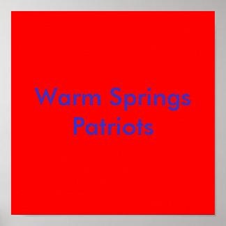 Warm SpringsPatriots Poster