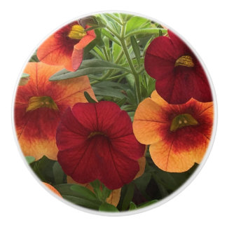 Warmth Of The Sun Floral Ceramic Knob