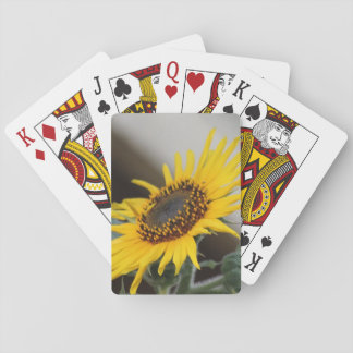 Warmth Playing Cards