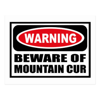 Warning BEWARE OF MOUNTAIN CUR Postcard