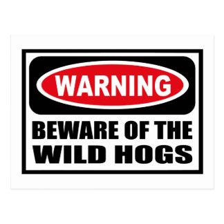 Warning BEWARE OF THE WILD HOGS Postcard