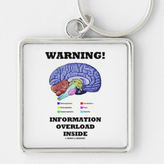 Warning! Information Overload Inside (Brain Humor) Keychain