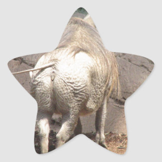 Warthog Behind Sticker