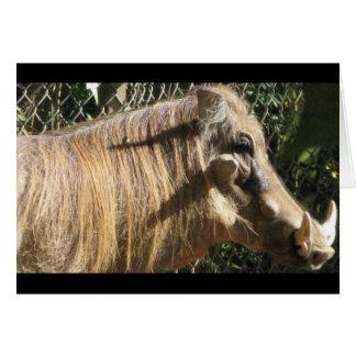 Warthog Card