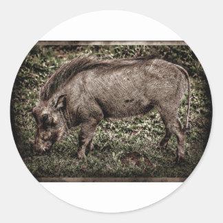 Warthog. Classic Round Sticker