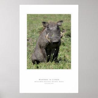 Warthog in Clover Poster