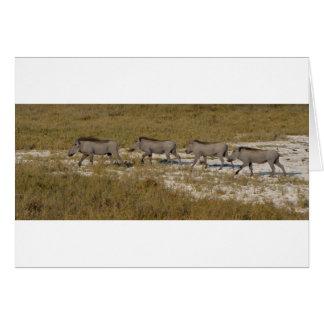 Warthog Parade Tom Wurl Card