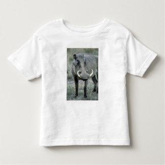 Warthog Phacochoerus africanus) Masai Mara Toddler T-shirt