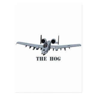 Warthog Postcard