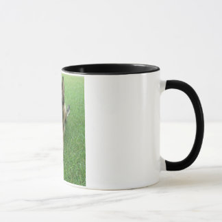Warwick mug