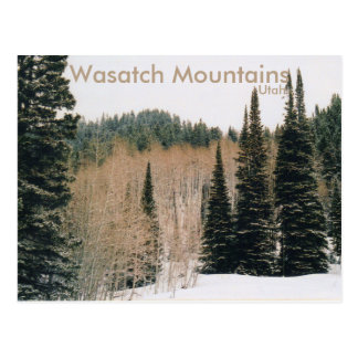 Wasatch Mountains Winter Scene Postcard