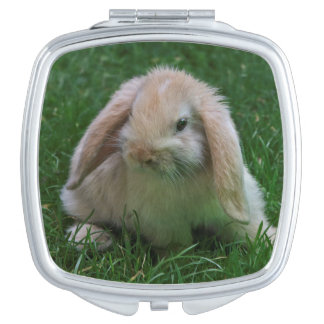 Wascally Wabbit Compact Mirror