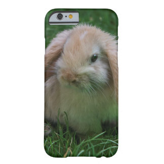 Wascally Wabbit iPhone 6 Case