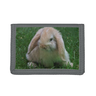 Wascally Wabbit Wallet
