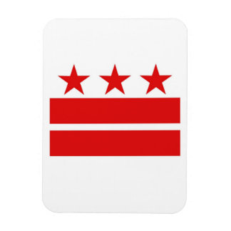 Washington DC Flag Magnet