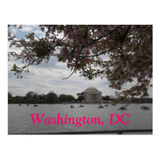 Washington DC in the Spring Postcard