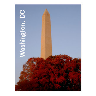 Washington, DC:  Washington Monument in Fall Postcard