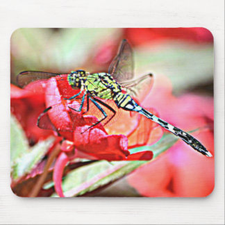 Washington Green Darner Dragonfly Mouse Pad
