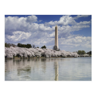 WASHINGTON MONUMENT LITHOGRAPH POSTCARD