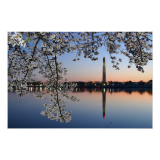 Washington Monument Spring Morning Poster