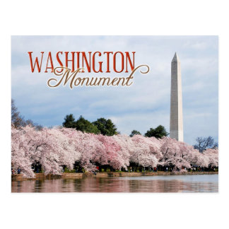 Washington Monument with cherry blossoms Postcard