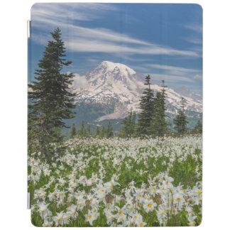 Washington, Mount Rainier National Park 1 iPad Cover