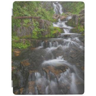 Washington, Mount Rainier National Park 2 iPad Cover