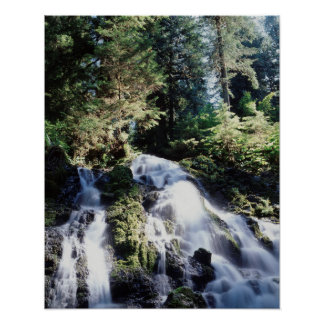 Washington, Olympic National Park, A waterfall Poster