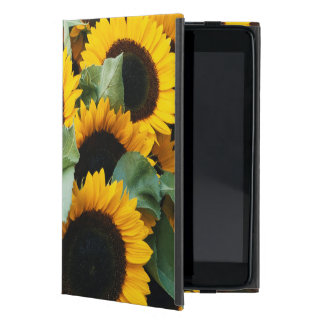 Washington, Seattle, Sunflower for sale pike Cases For iPad Mini