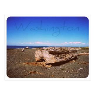 Washington State Seashore: Photograph Postcard