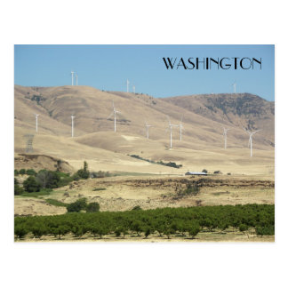 Washington State Vineyards Travel Postcard