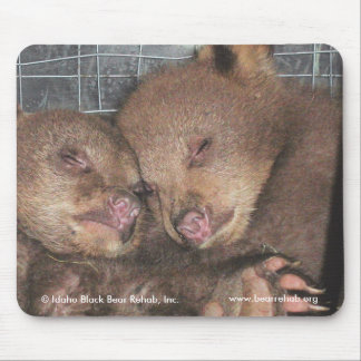 Washington Twins 2010 Mousepad