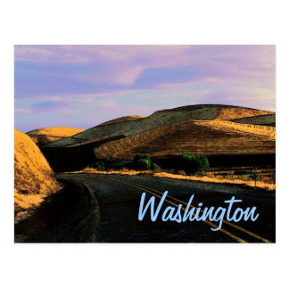 Washington Wheat Postcard