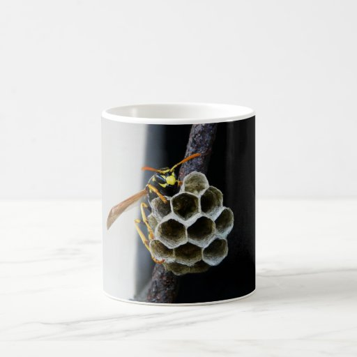Wasp Nest and Worker Mug