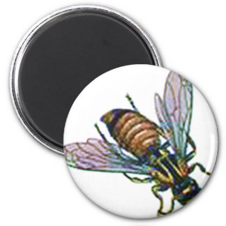 Wasp or Hornet 2 Inch Round Magnet
