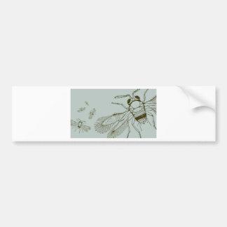 Wasps, Aspidiotiphagus Citrinus Bumper Sticker