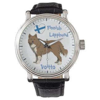 Watch Finnish Lapphund Irish brown Lapinkoira