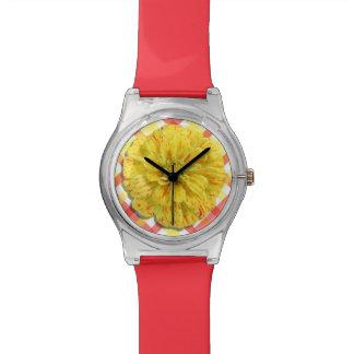 Watch - May28th - Candy Stripe Zinnia on Lattice