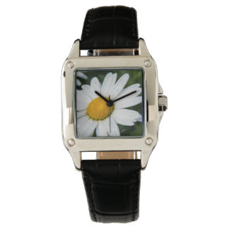 Watch photo daisy