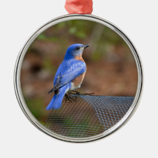Watch the Bluebird bring Happiness! Silver-Colored Round Ornament